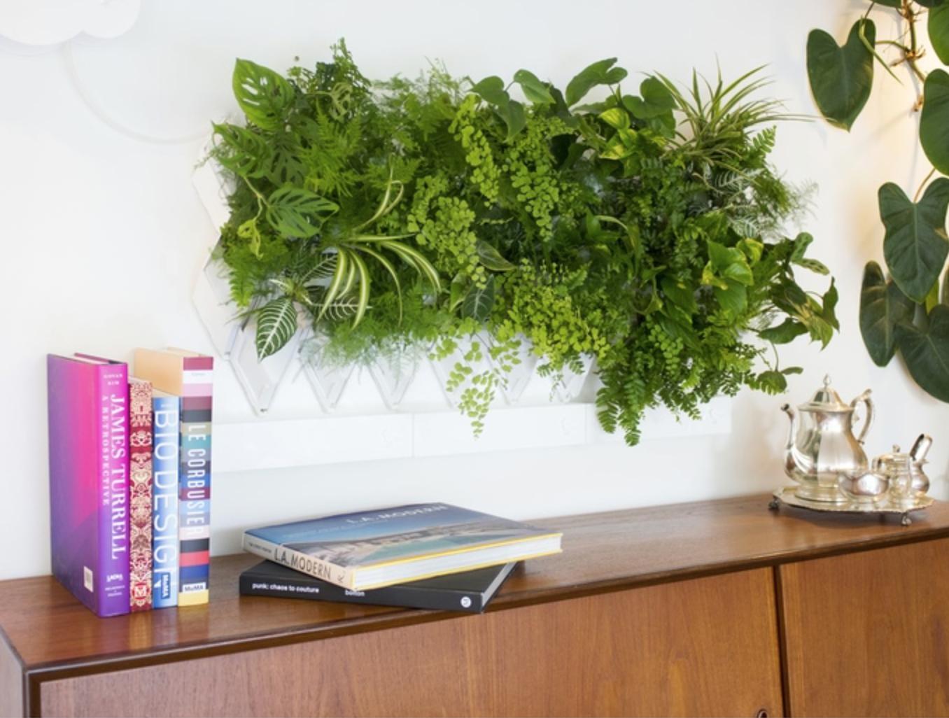 озеленение интерьера офиса