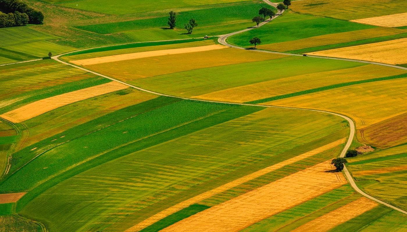 Эксперт назвала стоимость гектара земли после снятия моратория на ее продажу
