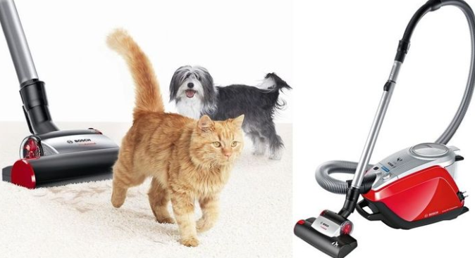 Какой пылесос лучше для уборки шерсти домашних животных
