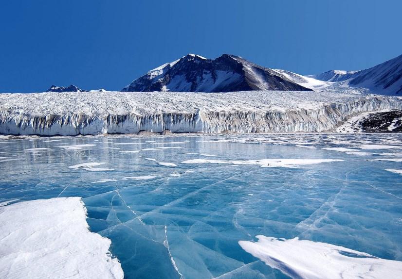 В Антарктиде обнаружили шокирующую находку