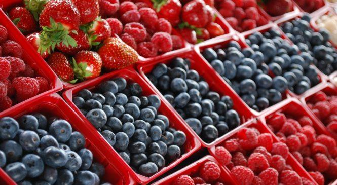 Экспортные рекорды: ждать ли Украине «ягодного» бума в сезоне-2019